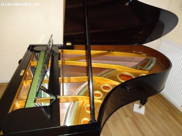 pianomovers bechstein fl gel modell b. Black Bedroom Furniture Sets. Home Design Ideas