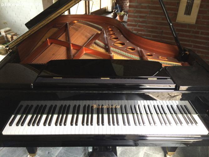 pianomovers toller b sendorfer 200 fl gel von 1983 top. Black Bedroom Furniture Sets. Home Design Ideas